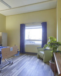 Resident Suite (3)